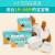 犬の生理ズボンボンの生理生理用ナップの安全ズボンプの女性の尿顕の爪印XPS(1-3提案)の多倍の吸水(10枚/バトッグ2)
