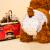 スペト用品犬生理ズボン薩摩泰迪紙オムツ公犬おむつ泰迪法牛柯基犬大姨妈服月経ズボンオムツ犬用品犬用:XL(20-30斤向け)10錠入り
