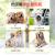 スペクター犬の女性泰迪犬生理用ナプキンおばさんはセクブラ防止安全ズボンピンクXL号-ウエスト40-65 cmに適合しています。約32-44斤の犬です。